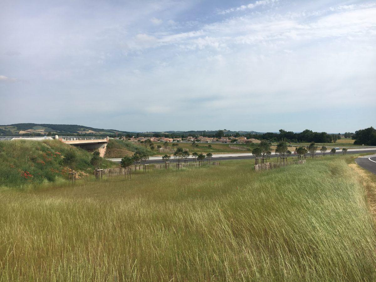 Les Portes du Tarn – Quartier d'activité - Mutabilis