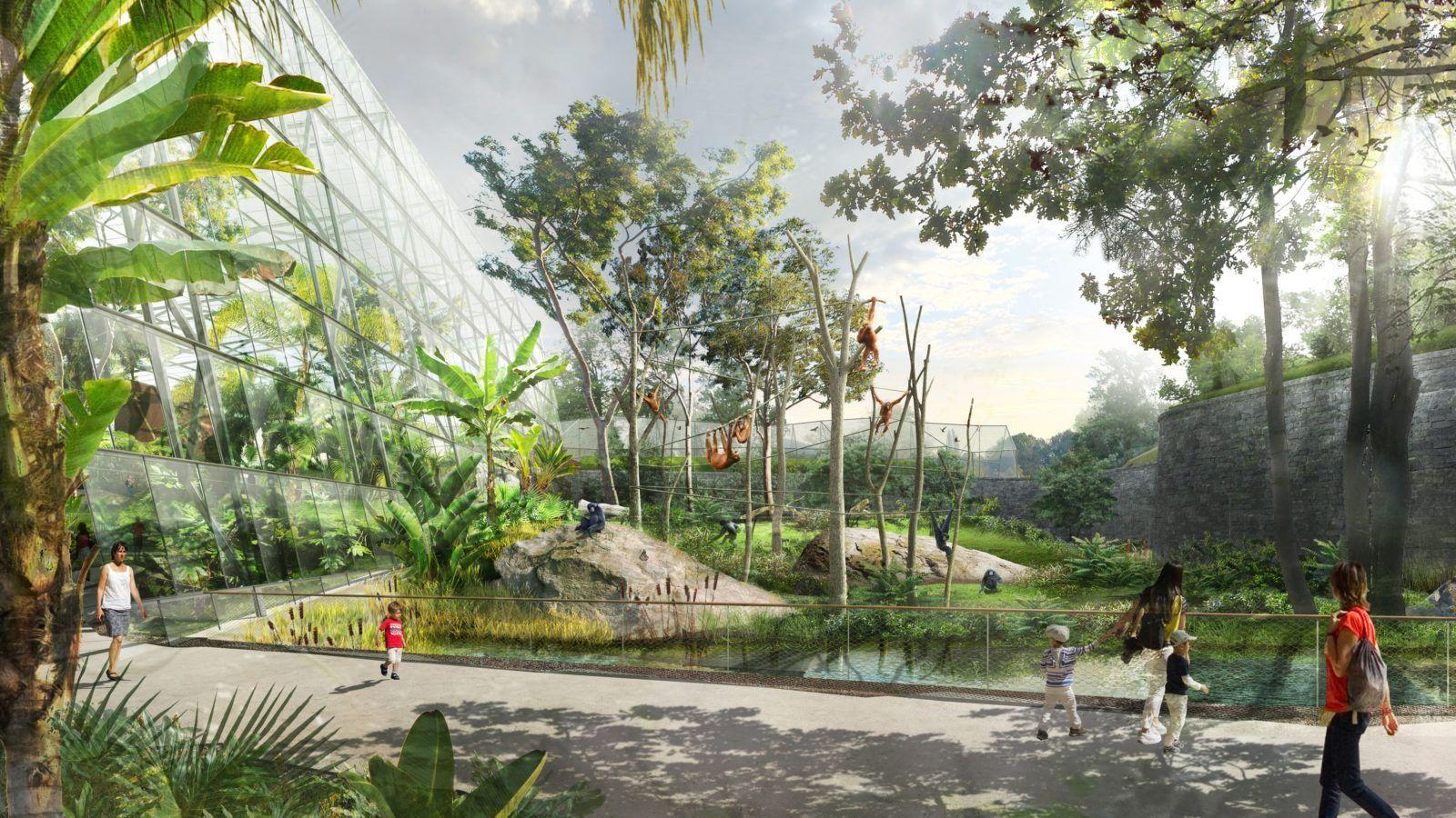 Le Grand Zoo - Mutabilis